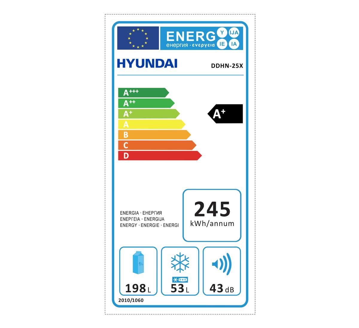 Hyundai DDHN-25X etichetta energetica